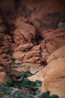 lensbaby Red Rock Canyon