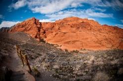 fisheye red rock canyon